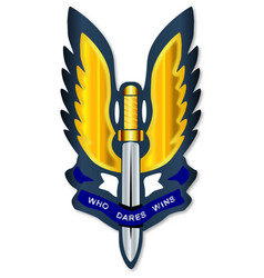 special air service badge vector image