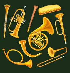 set of woodwind and brass musical instruments vector image
