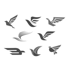 business brand icons of bird wings vector image