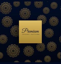 beautiful mandala pattern background vector image