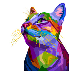 colorful cat isolated on white background vector image