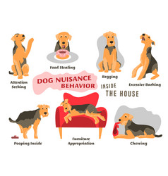Dog behavior problems icons set vector