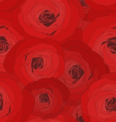 Rose seamless pattern for decoration vector image