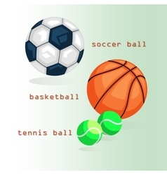 Sports balls Football basketball tennis vector
