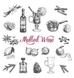 hand drawn with mulled wine vector image vector image