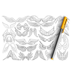 Bird wings patterns doodle set vector