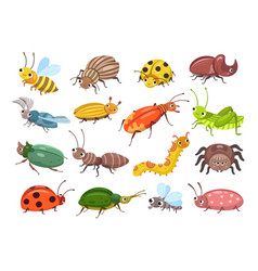 cartoon beetle funny smiling bugs children vector image