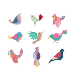 collection of beautiful colorful stylized birds vector image