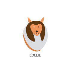 head with face a cute brown collie dog vector image