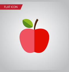 Isolated fresh fruit flat icon harvest vector