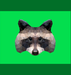 low poly racoon vector image