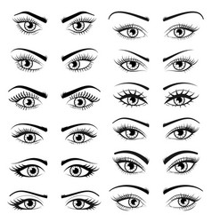 Set open beautiful female eyes isolated on white vector