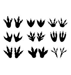 Dinosaur footprint tracks set vector image