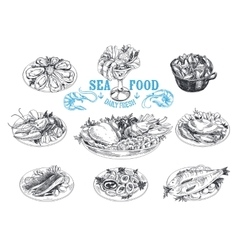 hand drawn with seafood vector image
