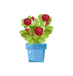 Spring flower in pot isolated icon vector