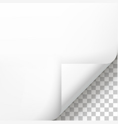 page curl with shadow on blank sheet of paper vector image vector image