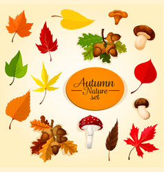 autumn season icon set with leaf and mushroom vector image