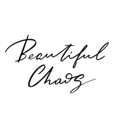 Beautiful chaos hand drawn lettering isolated vector