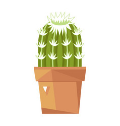 Green cactus in ceramic pot isolated icon vector