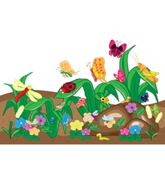 Insects family on the ground and tree Insects cart vector