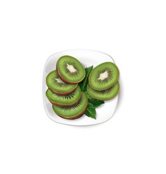 Kiwi slices and leaves on a white plate vector