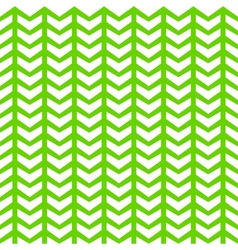 pine pattern vector image
