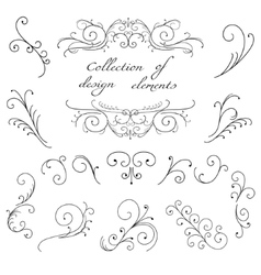Swirl decorative elements vector