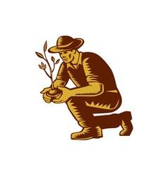 Organic Farmer Planting Tree Woodcut Linocut vector image vector image