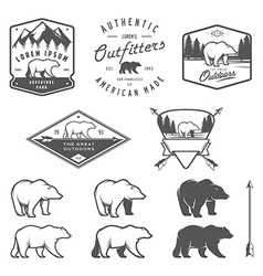 Set of vintage bear icons emblems and labels vector image vector image