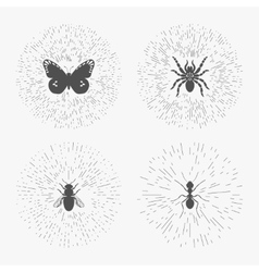 Hipster logo templates with insects vector image vector image