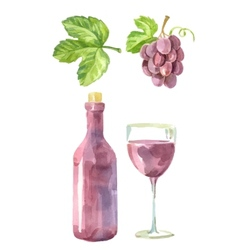 picture of wine vector image vector image