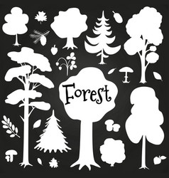 white forest elements on chalkboard tree bushes vector image