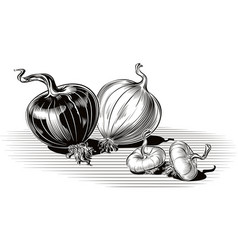 Copper onion and white onion whole and two onions vector