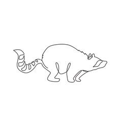 one single line drawing lovely funny raccoon vector image