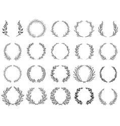 ornamental branch wreathes laurel leafs wreath vector image