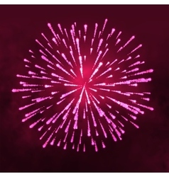 Salute glowing Firework isolated on dark vector