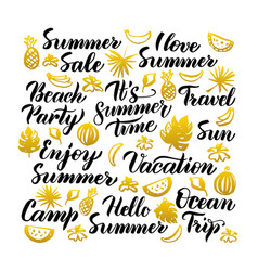 summer time handwritten lettering vector image