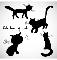Collection of four cats vector image
