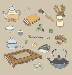 set tea ceremony with various traditional tools vector image