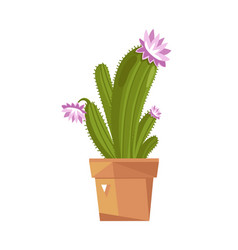 Cute potted cactus isolated icon vector