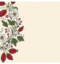 Striped background barberry with white flower vector