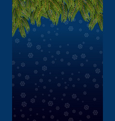 branches of spruce and night sky snowflakes fly vector image vector image