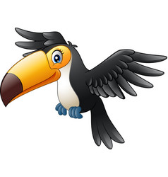 cartoon funny toucan flying vector image