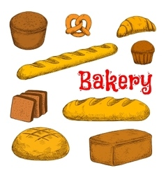 Colorful sketched bakery and pastry products vector