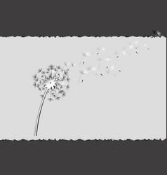 flying dandelion seeds 2 vector image