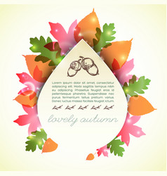 lovely autumn template vector image