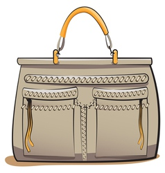 gray ladies handbag vector image