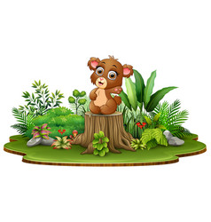 Cartoon happy baby bear sitting on tree stump with vector