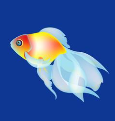 golden fish on the dark blue beckgound vector image vector image