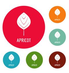 apricot leaf icons circle set vector image